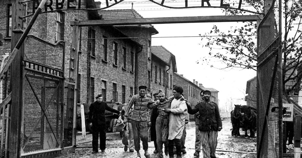 Nem kell ide holokauszttagadás, úgysem tudnak róla semmit
