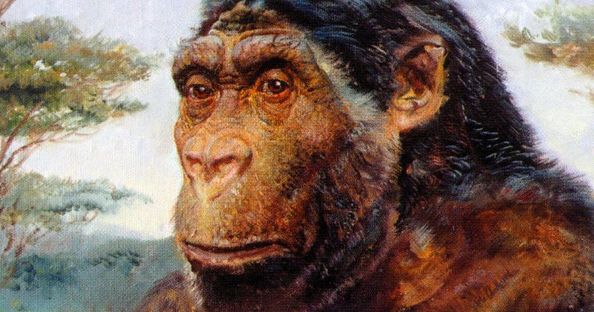 Emberszerű faj koponyájára bukkantak: nagy szerencse a kutatók szerint