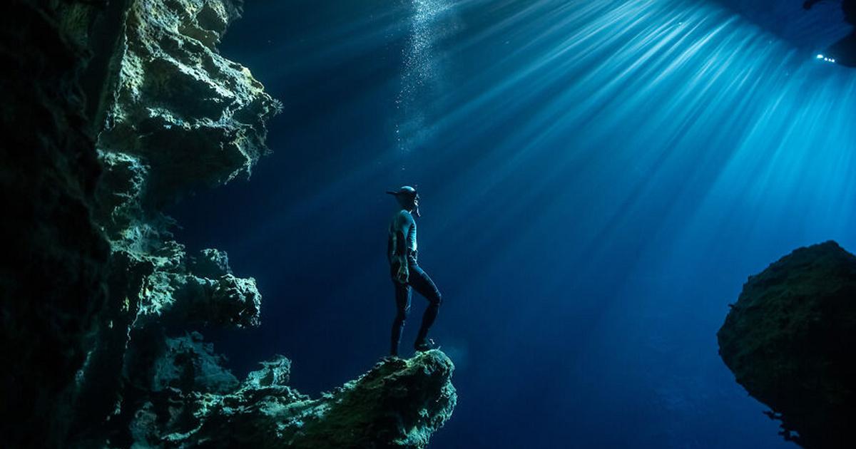 Ezek most a legjobb képek az óceán titokzatos világáról - Ilyen gyönyörű fotókat ritkán látni