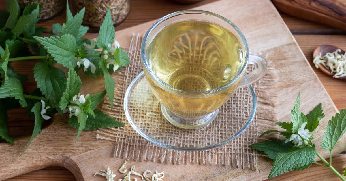 étvágycsökkentő gyógynövény tea)