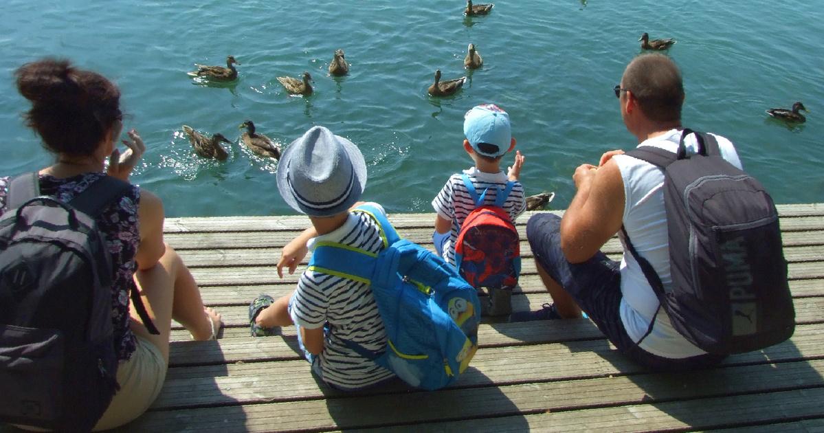 3 gyermek egyetlen szabadság)