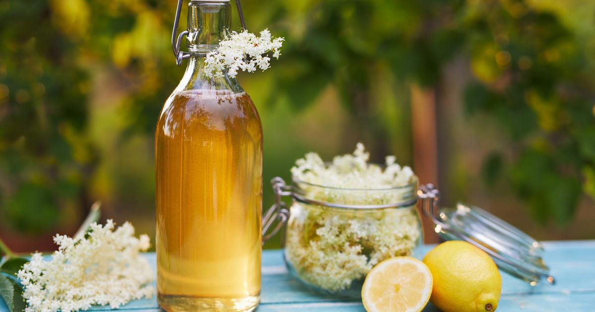 Frissítő citrusos bodzaszörp: kevés munkával elteheted egész télire