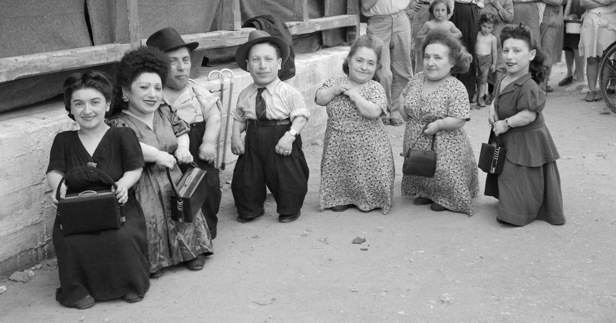 Az auschwitzi hét törpe élve került haza a földi pokolból