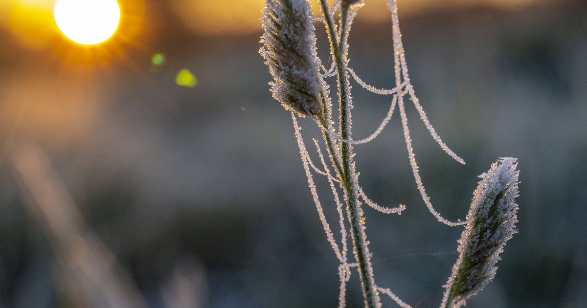 Hideg reggelre keltek Zalában: gyönyörű képeket készített a tájról a magyar fotós