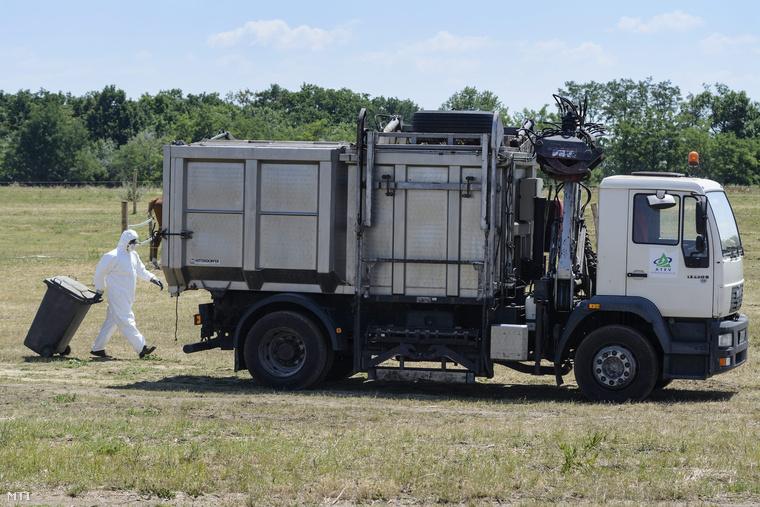 Az ATEV Fehérjefeldolgozó Zrt. munkatársa dolgozik egy állatimelléktermék-begyűjtő jármű mellett egy Tiszafüred-Kócsújfalu közelében található szarvasmarhatelepen 2014. július 4-én.