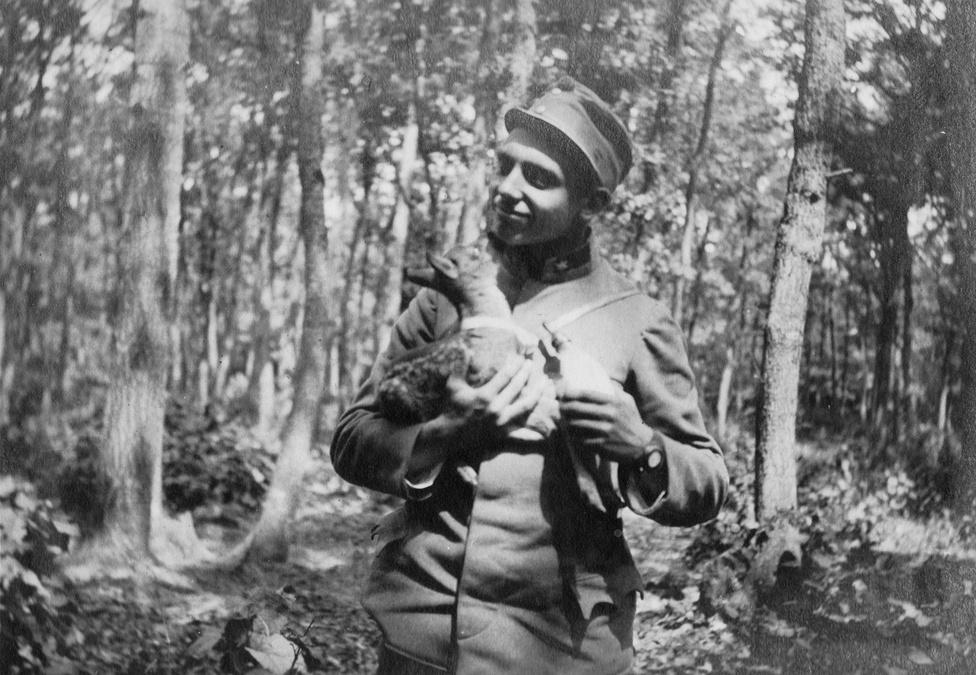 Schneider hadnagy az ezred kabala állatával, Micivel. Mici őzikét egy erdőben találták, az anyját nyilván nagy örömmel feltálalták valahol. Egészen serdülőkoráig cipelte magával az ezred, míg végül úgy döntött a felsőbbség, hogy az ezredre és Micire nézve is biztonságosabb, ha a budapesti állatkertnek adományozzák.