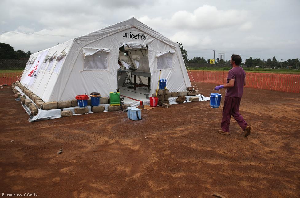A járvány egy guéckédou-i (délkelet-guineai) család tragádiájával kezdődött, ahol az unokái és lánya után meghaló nagymama temetéséről két gyászoló is fertőzötten távozott. Mindketten más faluban laktak. A faluban dolgozó egyik ápoló egy harmadik helyre is behurcolta az ebolát, és mielőtt meghalt volna, megfertőzte az őt kezelő orvost, aki szintén belehalt a betegségbe. Még amikor mindketten életben voltak, a kórházban rokonok látogatták meg őket, akiket megfertőztek és akik újabb városokba juttatták el a halálos kórt. Mire márciusban a hatóságok felismerték, mivel állnak szemben, nyolc guineai városban és faluban több tucatnyi ember halt meg, és fertőzöttek száma Libériában és Sierra Leonéban is egyre nőtt. A három ország a világ legszegényebb régiójában található, melyet polgárháborúk sújtanak már évek óta. A képen David Safronetz amerikai víruskutató vérmintákat cipel a nemrég megnyitott mobil laboratóriumba Monrovia közelében.