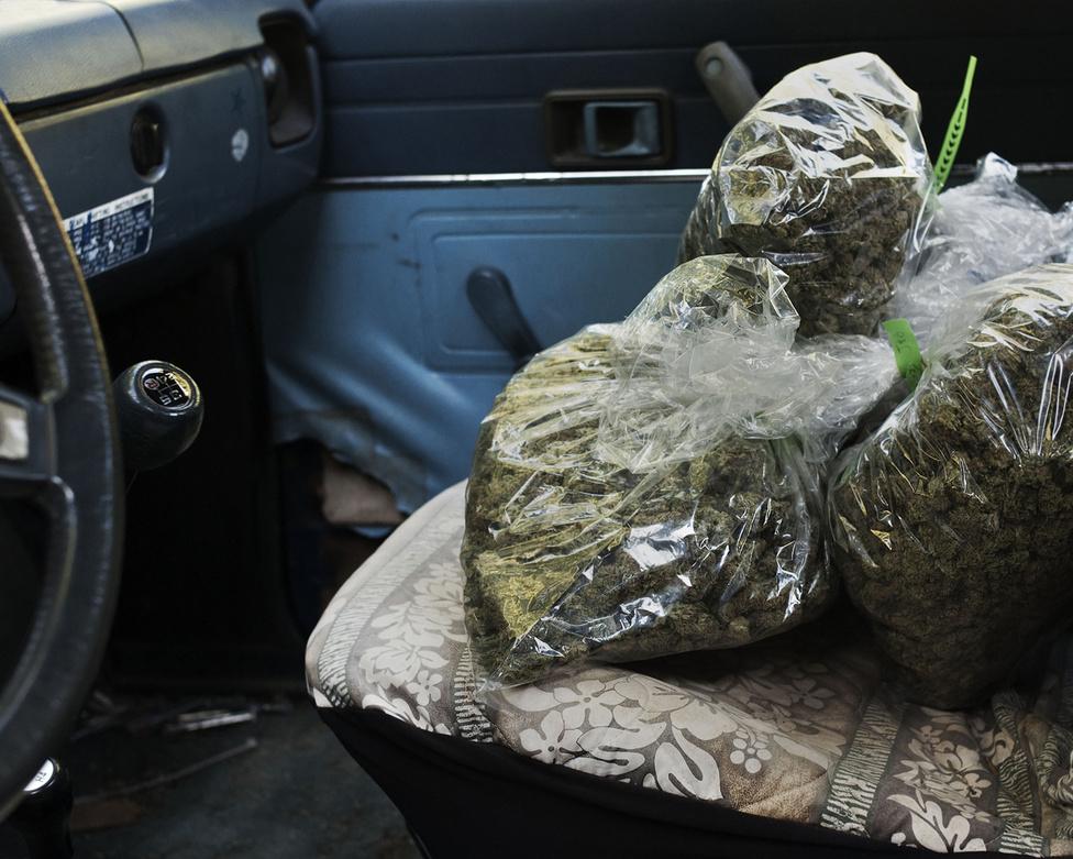 Van olyan fűtenyésztő, aki évente 1 millió dollárt is megkeres az illegális marihuánakereskedelemből, de pár éve még a Humboldt megyei rendőrfőnök is lebukott, hogy nyugdíjazása után kendert kezdett nevelni a házának hátsó kertjében.
