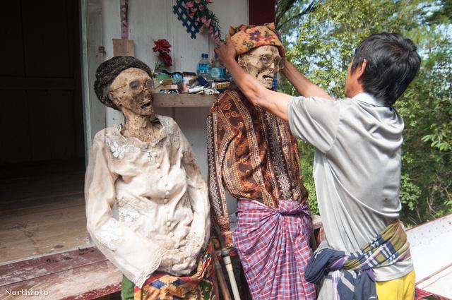 meet nőt indonéziában barátságos társkereső guadeloupe