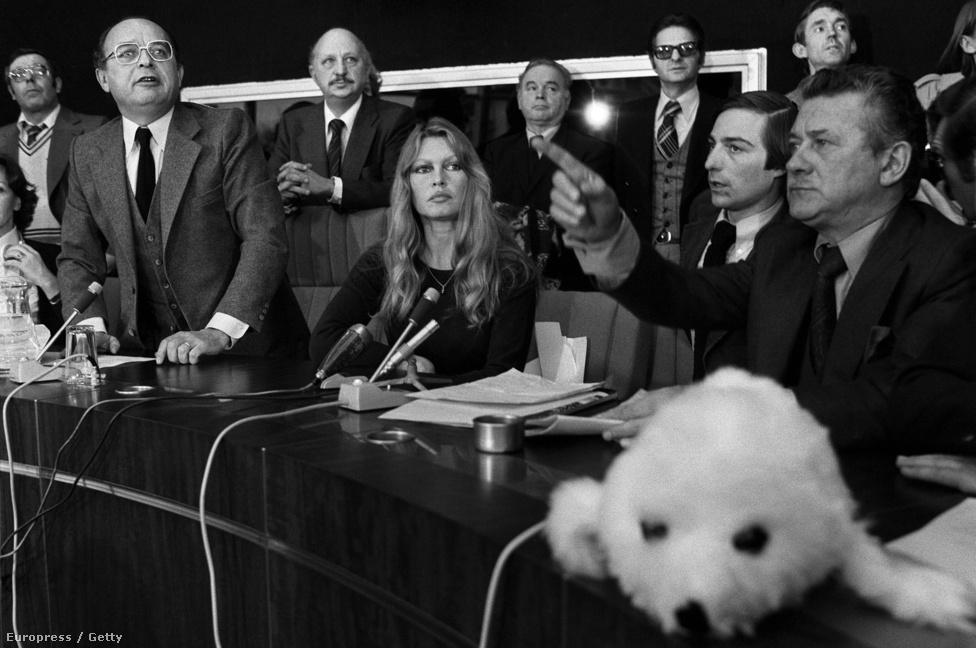 """A Brigitte Bardot Állatvédő Alapítvány támogatására saját ékszereit, ruháit, vagyontárgyait árverezte el. Híres birtokát, a Madrague-ot is az alapítványnak adta. A hétköznapi életben is komolyan veszi az állatvédelmet: vegetáriánus lett, és egyszer ivartalanította a szomszédja szamarát, amíg ő vigyázott rá, mert """"erőszakoskodott"""" az ő szamarával. Tüntetéseket és konferenciákat szervezett, több mint 30 millió forintnyi adománnyal támogatta a bukaresti kóbor kutyák ivartalanítását, felszólalt a fókák, delfinek, lovak, tigrisek és orrszarvúk leölése ellen is. """"Nem kezelhetjük tovább úgy az állatokat, mint a tárgyakat, élőlényekhez méltó módon kell bánni velük"""" – mondta, amikor 140 Magyarországról csempészett, egy nizzai menhelyre került fajtiszta kutyakölyköt látogatott meg. Állatvédő alapítványa felajánlotta, hogy a karantén lejártával gondoskodik a kölykökről, és új, állatvédő gazdát keres nekik."""