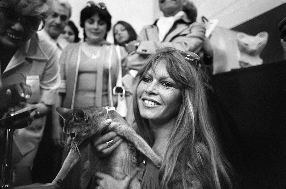 """""""A szépségemet és a fiatalságomat férfiaknak adtam, a bölcsességemet és a tapasztalatomat az állatoknak adom"""" – mondta visszavonulásakor, ami óta ismertségét és idejét az állatvédelem ügyének szenteli. """"Az állatokban sosem csalódtam. Könnyű prédák, ahogy én is az voltam egész pályafutásom alatt. Ugyanazt éltük át, szeretem őket"""" – tette hozzá."""