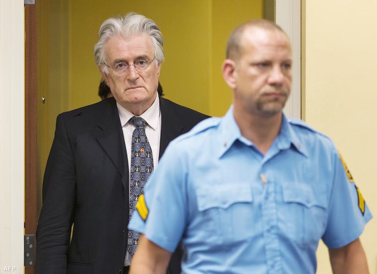 Radovan Karadžić a hágai Nemeztközi Törvényszéken, 2013. július 11-én.