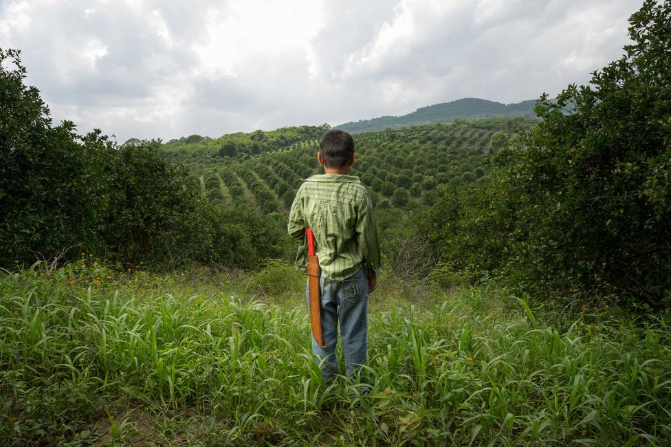 A mixtek elsősorban mezőgazdasággal foglalkoznak, jellemzően kukoricát, babot, tököt, kávét és burgonyát termelnek.