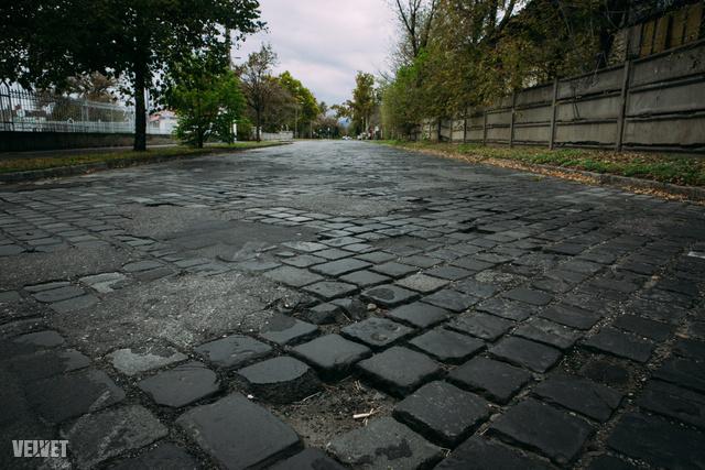 Kámfor utca