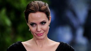 Angelina Jolie politikai pályára lépne