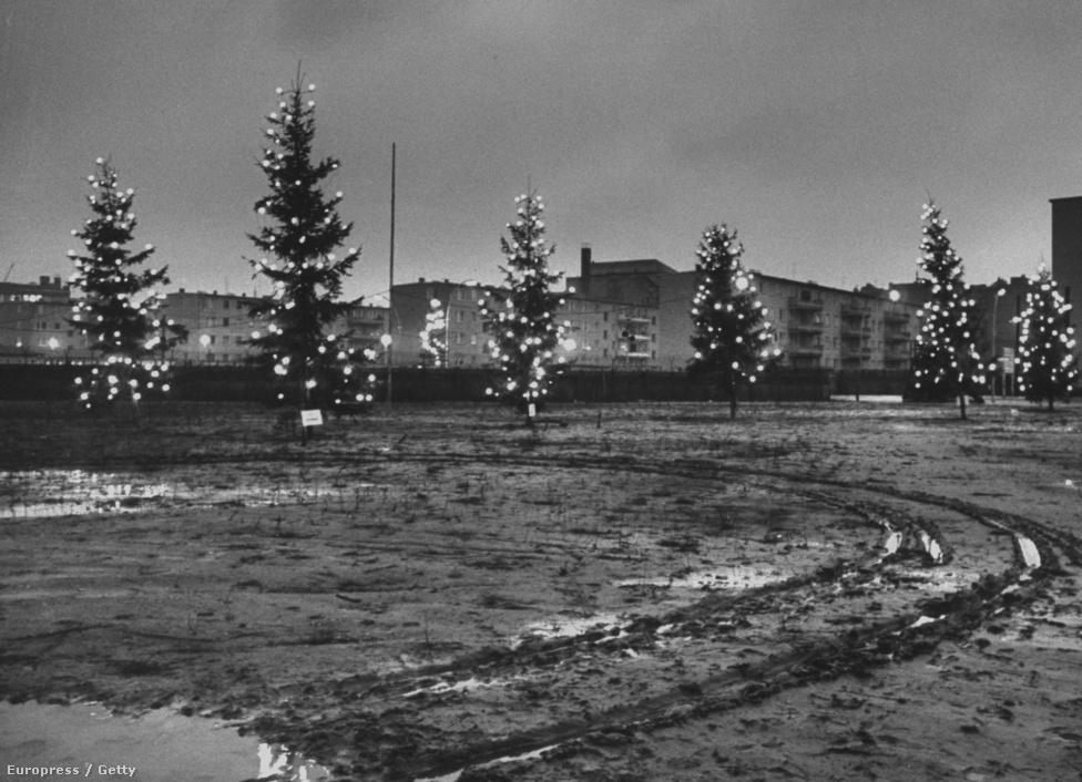 Feldíszített karácsonyfák kölcsönöznek ünnepi                          hangulatot a fal nyugati oldalán, a fényük jól                          látszik a keleti oldal lakóházaiból is. Az egyre több szakaszon a falat belepő graffitik is jól jelezték, hogy, Nyugat-Berlin felől közvetlenül meg lehetett közelíteni a falat.