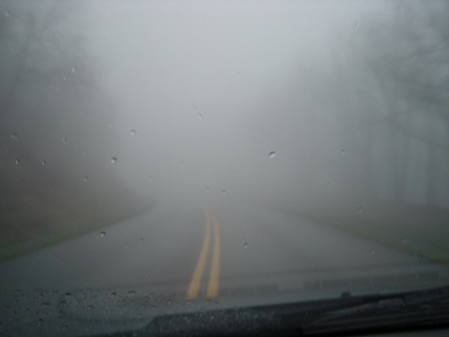 fog on the roads44