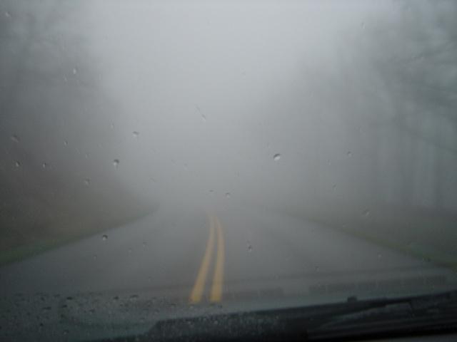fog on the roads44