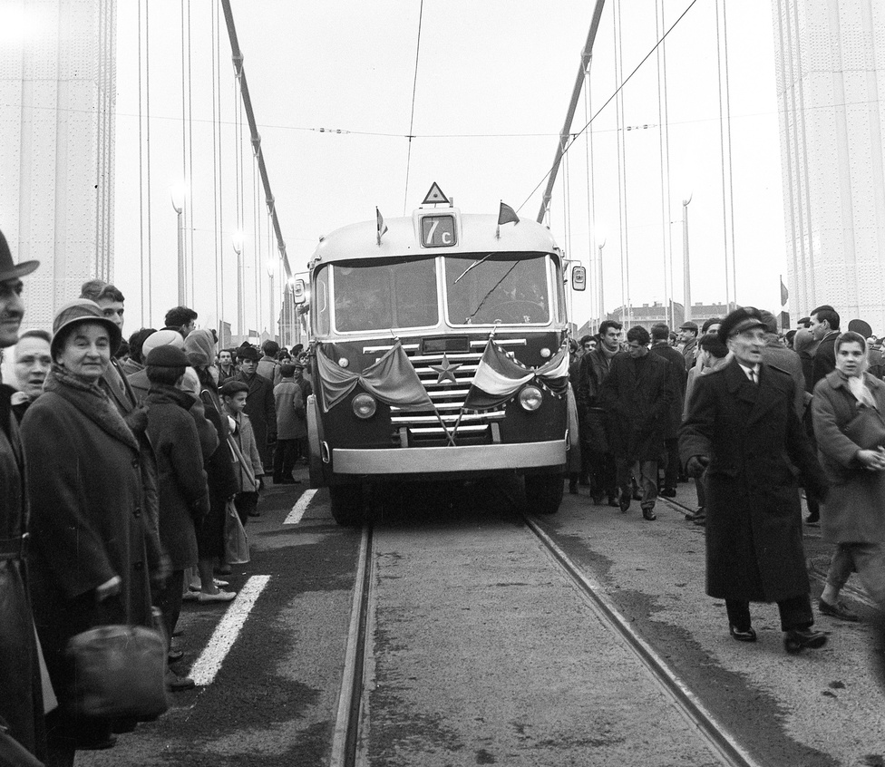 Az első, Erzsébet hídon áthaladó busz, egy 7C-s, 1964. november 21-én. Budapest egyik legrégebbi buszjárata a 7-es buszcsalád. 1927-től 1933-ig már járt a 7-es, viszont egészen más nyomvonalon, Óbudán. A mai 7-es őse 1936. május elsején indult meg a Keleti pályaudvar és a Március 15. tér között, majd a nagy sikerre való tekintettel novemberben átvezették az Erzsébet hídon egészen a Mechwart térig. A buszok az Erzsébet híd megnyitása után visszatértek a hídra. A négyes metró 2014-es átadása után a 7-es Albertfalva vasútállomás – Bornemissza tér – Bikás park – Bosnyák tér – Újpalota, Nyírpalota út útvonalon jár.