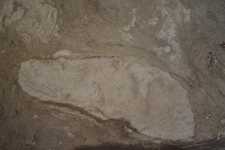 ancient-footprints-4