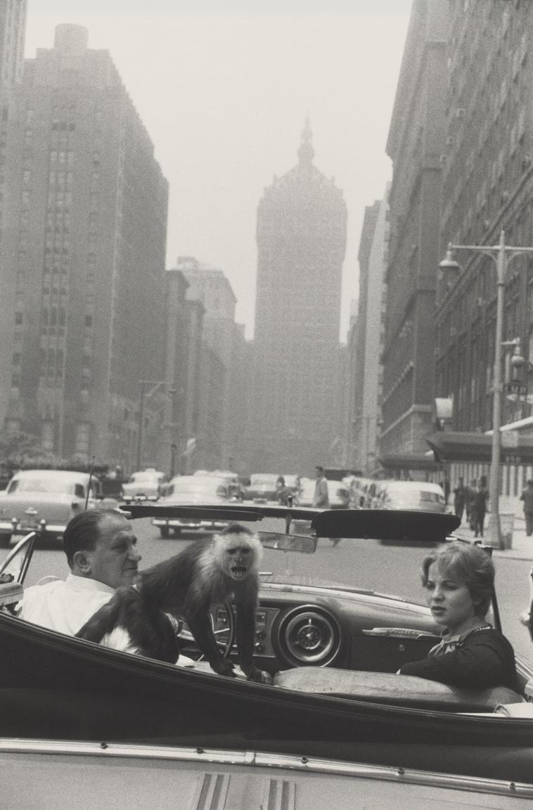 Park Avenue, New York (1959)