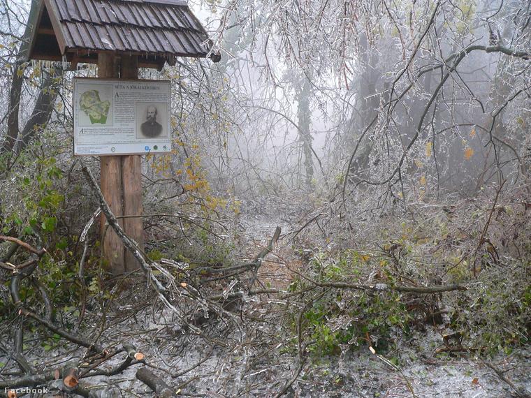 A Jókai kert is romokban.