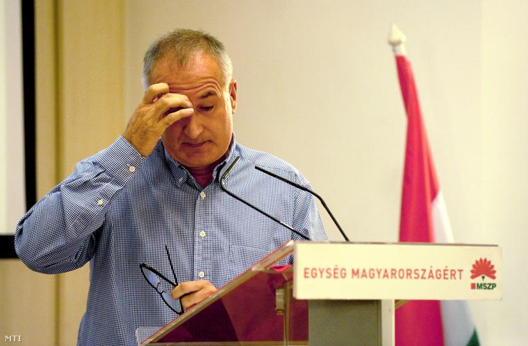 Simon Gábor 2011 szeptemberében