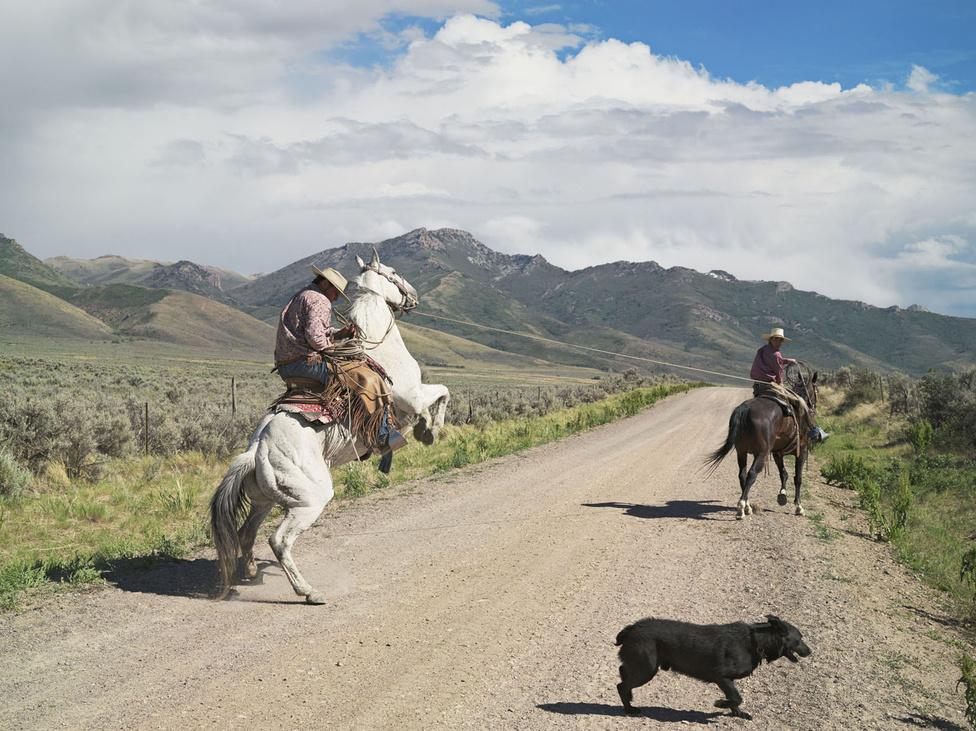 """""""Amikor először jártam a mostani Vadnyugaton, nomád cowboyokra számítottam, kihalt szellemvárosokra és burjánzó vadonra. Az, ahogy Casey és Rowdy lovakat tör be, talán a legjellemzőbb a mostani Vadnyugatra. A táj továbbra is ikonikus, a ló a két hátsó lábán áll, de Casey nem menőzik a hátán, hanem kétségbeesetten igyekszik a nyeregben megmaradni. """"                         Casey és Rowdy betörnek egy lovat, 71 Ranch, Deeth, Nevada 2012"""