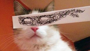 Rajzolt macskaszemekért őrül meg Japán