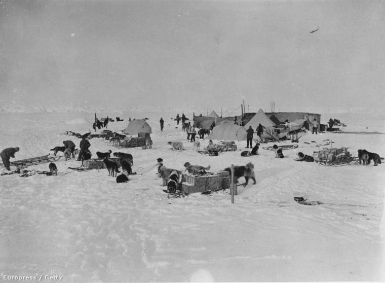 Tábor az Antarktiszon 1914-ben