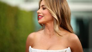 Sofia Vergara most már híres amerikai modell