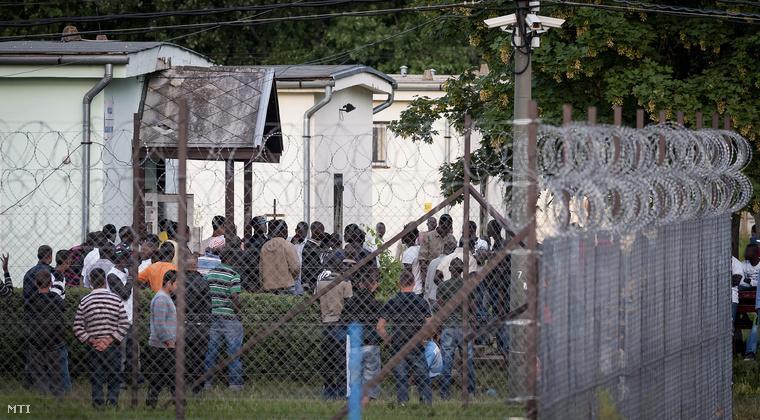 A debreceni menekülttábor 2013. június 28-án