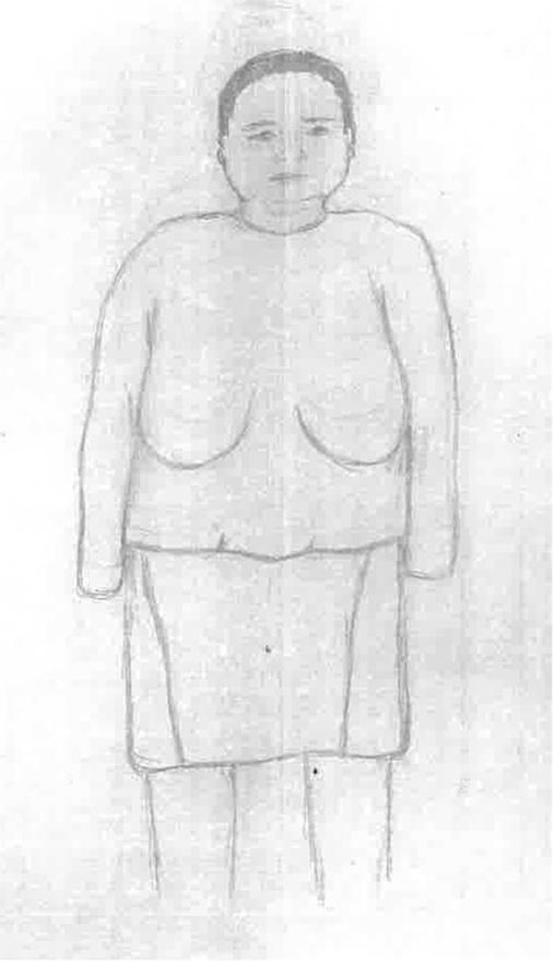 Az volt az Év Fantomképe, nincs kétség. A nő Békéscsabán, az Andrássy úton egy ruházati üzletben egy táskából pénzt lopott. Azt lehetett tudni róla, hogy kb. 170 cm magas, kerek arcú, telt testalkatú, 30 év körüli, szürke mintás, bő pólót és térdig érő fekete szűk szoknyát viselt, amin középen végig volt egy fekete színű bőr betét, és a vékony szálú barna haját copfba kötötte. Mindezt így sikerült ábrázolnia a rajzolónak.