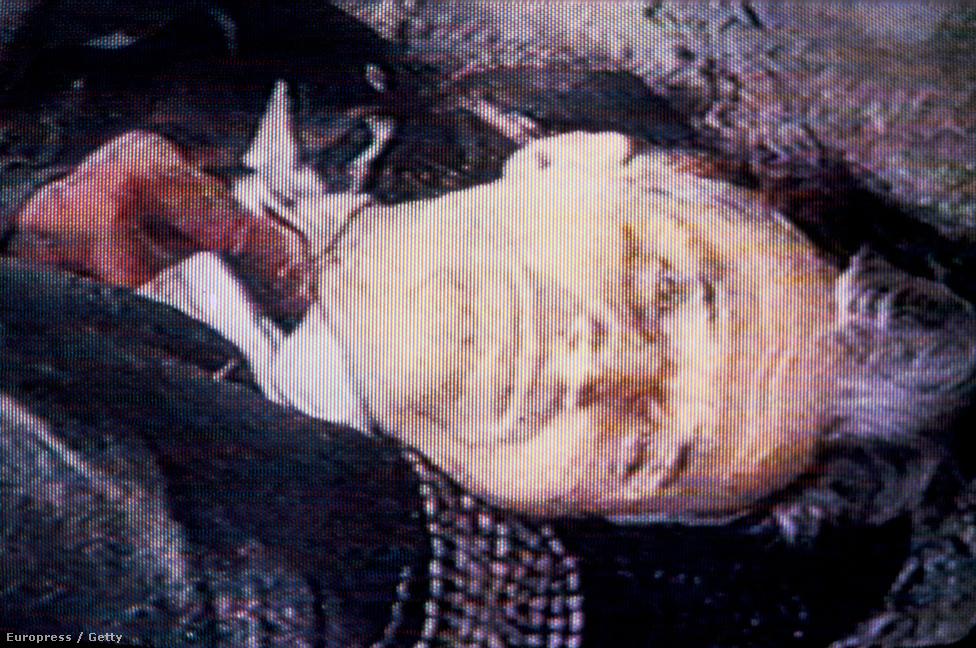 Ceaușescu holtteste kivégzése után. A holttesteket titokban vitték vissza Bukarestbe, és december 30-án titokban is temették el, mert nem akarták, hogy a dühös tömeg feldúlja a sírt. Ennek ellenére ismeretlenek felírták a sírra Ceaușescu nevét, és a helyet évtizedeken át a házaspár sírjaként tartották számon. Végül fiuk kérésére 2010. júliusában DNS-vizsgálattal azonosították a holttesteket, majd újratemették őket az eredeti sírhely közelében.
