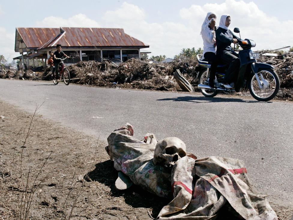 Őrizetlenül hagyott holttest az út mentén. Az indonéz kormány szerint a nemzetközi aktivisták munkáját fegyveres lázadók fenyegetései is nehezítették.