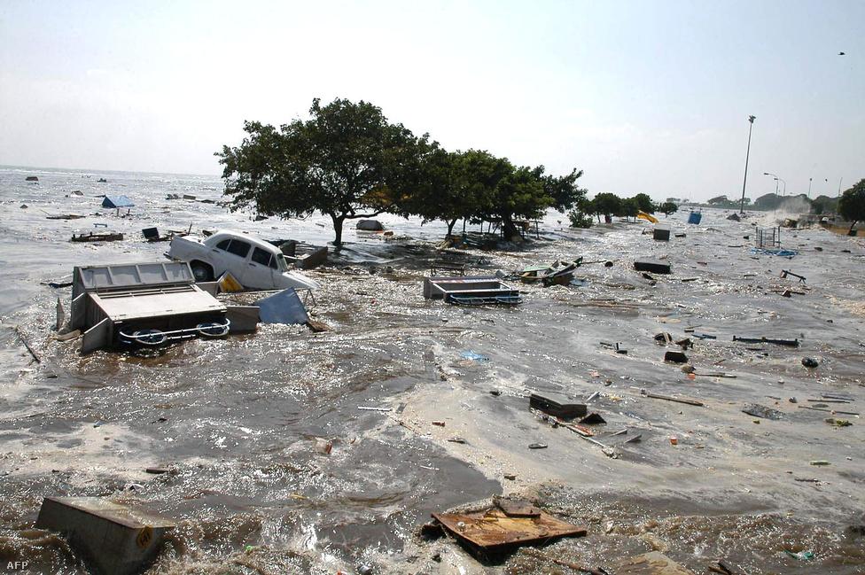 A kora reggel érkező gyilkos hullámok letarolták India déli partvidékét is. A földrengés epicentruma az indonéziai Szumátra szigetétől nyugatra volt, a szigetén a halálos áldozatok száma a százezret is elérhette. Egész városokat tett a földdel egyenlővé a szökőár, milliók váltak hajléktalanná. A legsúlyosabban Indonéziát, Srí Lankát, Indiát és Thaiföldet sújtotta.