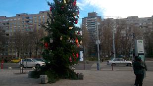 Ez lenne Budapest legcsúfabb karácsonyfája?