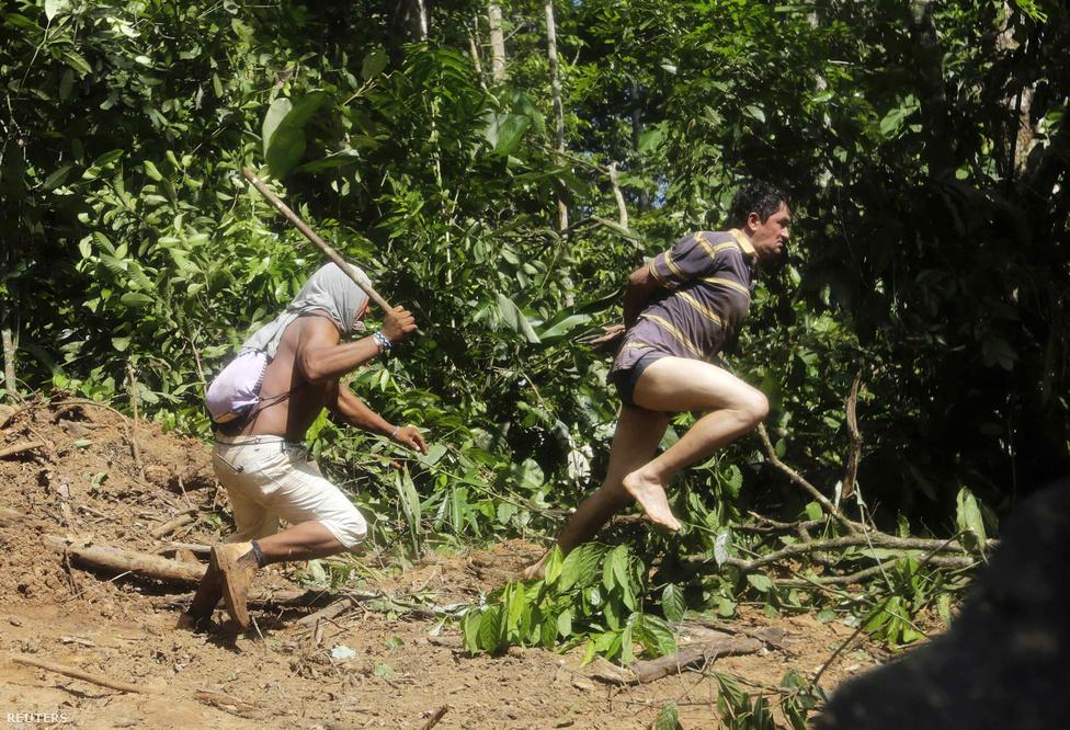 Egy korábban elfogott favágót üldöz egy indián harcos az Amazonas-medencében Brazília északi részén. Öt indián törzs is összefogott a favágók ellen, és több részről is elüldözték őket, miután állításuk szerint a kormány nem tesz meg eleget a területeik védelmében.