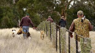 Kizsigerelt állattetemeket hagyott maga után az egykori polgármester vadásztársasága