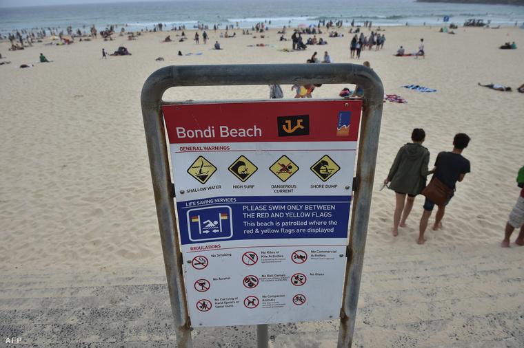 Az év elején a Bondi Beachet zárták le cápaveszély miatt.