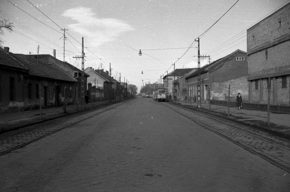 A 3-as, a 10-es és a 10A-s villamos járt errefelé 1960-ban. A külső Váci úton járunk, és ezekkel a villamosokkal átszállás nélkül juthattunk el a Nyugati pályaudvarig vagy az újpesti víztoronyhoz, esetleg a rákospalotai Kossuth utcáig, netán a Megyeri csárdáig. Én nem mondom, hogy ez azutcakép maga a csoda, de nézzék csak meg a következő képet:                         Újpest, Külső Váci út kifelé (asszem) vagy a Baross utca                         1041 Újpest, Külső Váci út kifelé a Tinódi utcától