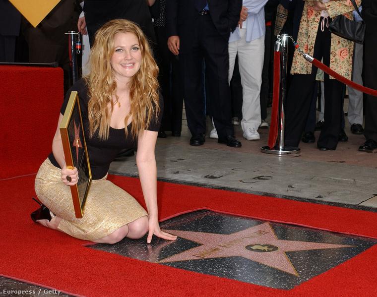 2004-ben csillagot kapott a Hírességek sétányán