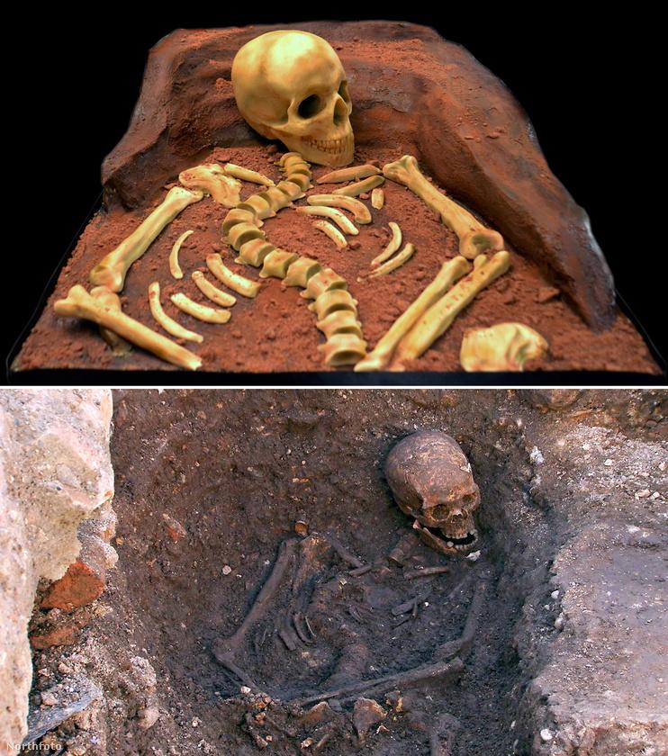 Egészen élethű lett, amennyiben lehet ilyet mondani egy csontváz esetében.