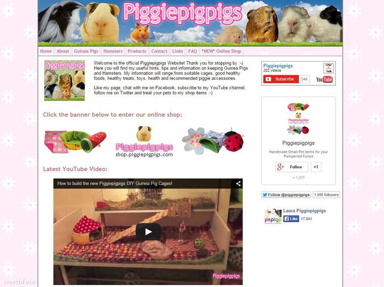 Az angol lány már több mint 100 videót töltött fel a Piggiepigpigs csatornájára, és több mint 5000 terméket adott el webshopjában