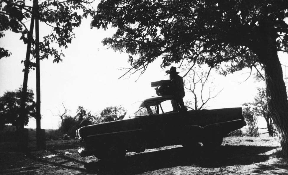 """Schiffer Pál dokumentumfilmjeit és azoknak valóságábrázolását sokan elemezték, vitatták, Hammer Ferenc is bírálta: """"Az olvasó képzeletére bízom, mennyire befolyásolja a filmes találkozások kimenetelét, ha 1970-ben egy választékos beszédű, bőrdzsekis ifjú riporter a technikai sleppel, mikrofonosokkal, világosítókkal, végigmegy a fekete vonaton vagy a szabolcsi putrisoron!"""""""