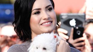 Demi Lovato lyukas, izzadt pólóban celebkedett
