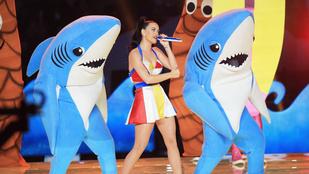 Végre felöltözhetek bal cápának!