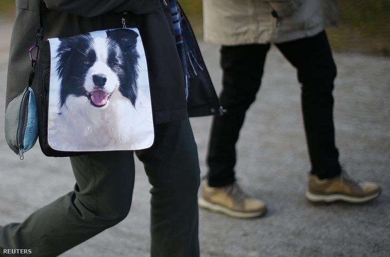 Ahogy az várható, rengeteg kutyabolond érkezik a kiállításra.