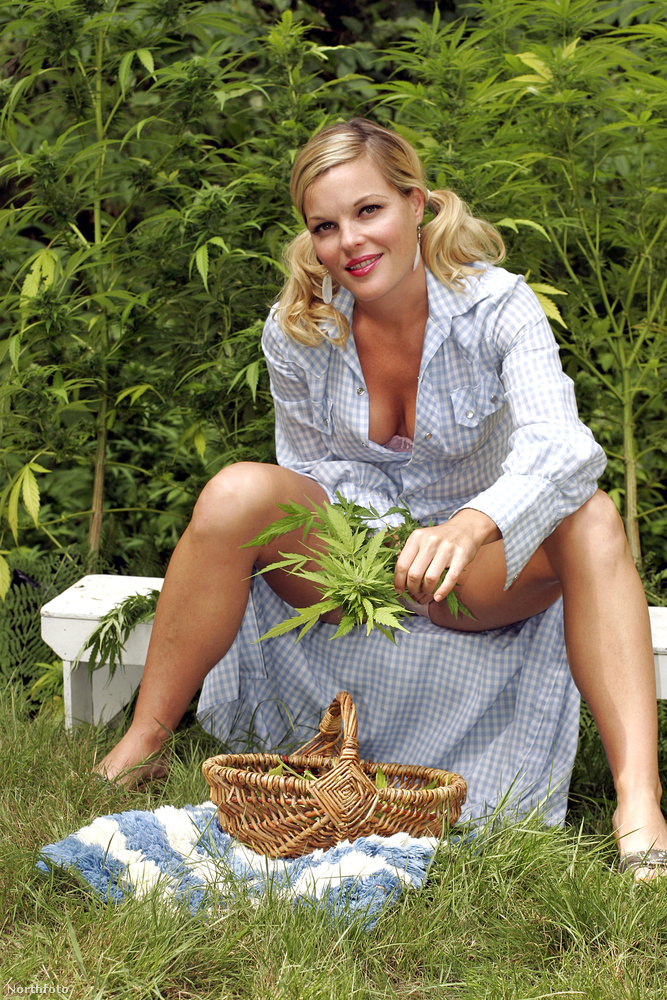 Minden receptje azzal kezdődik, végy egy adag marihuánát a kertből
