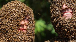 Méhek támadtak meg egy baseball meccset